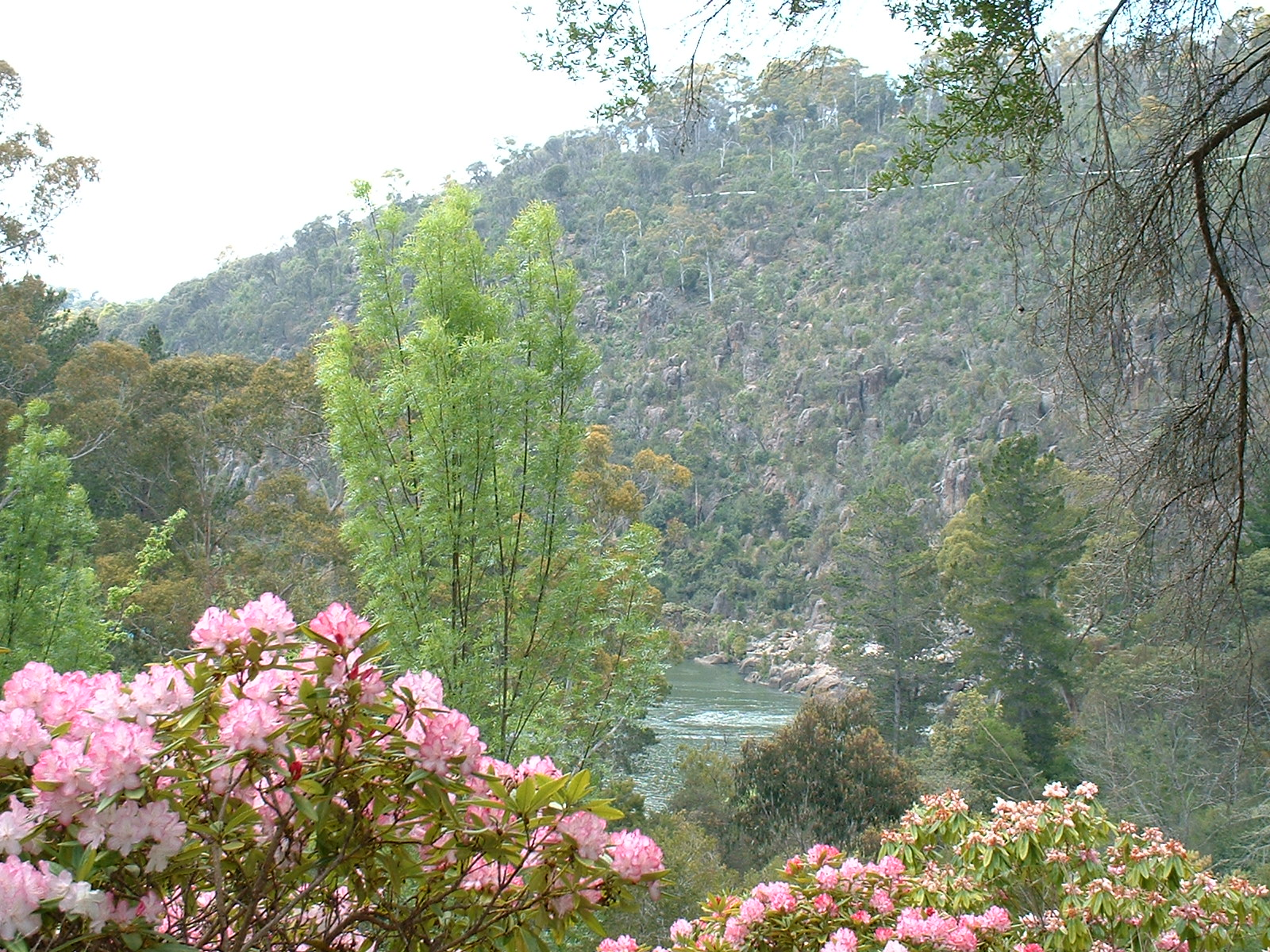 cataract-gorge-launceston